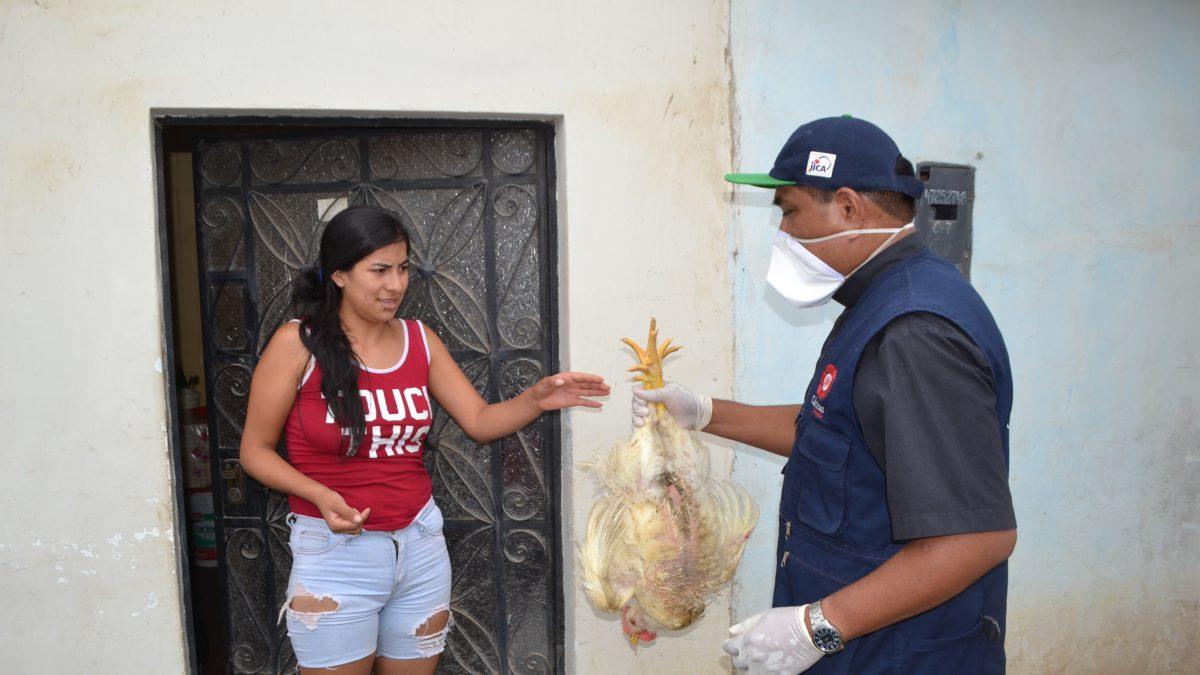 Coronavirus: Cáritas lleva nueva ayuda humanitaria a 8 mil familias necesitadas